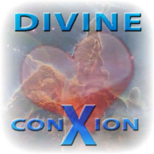 ecwid_divine_connect